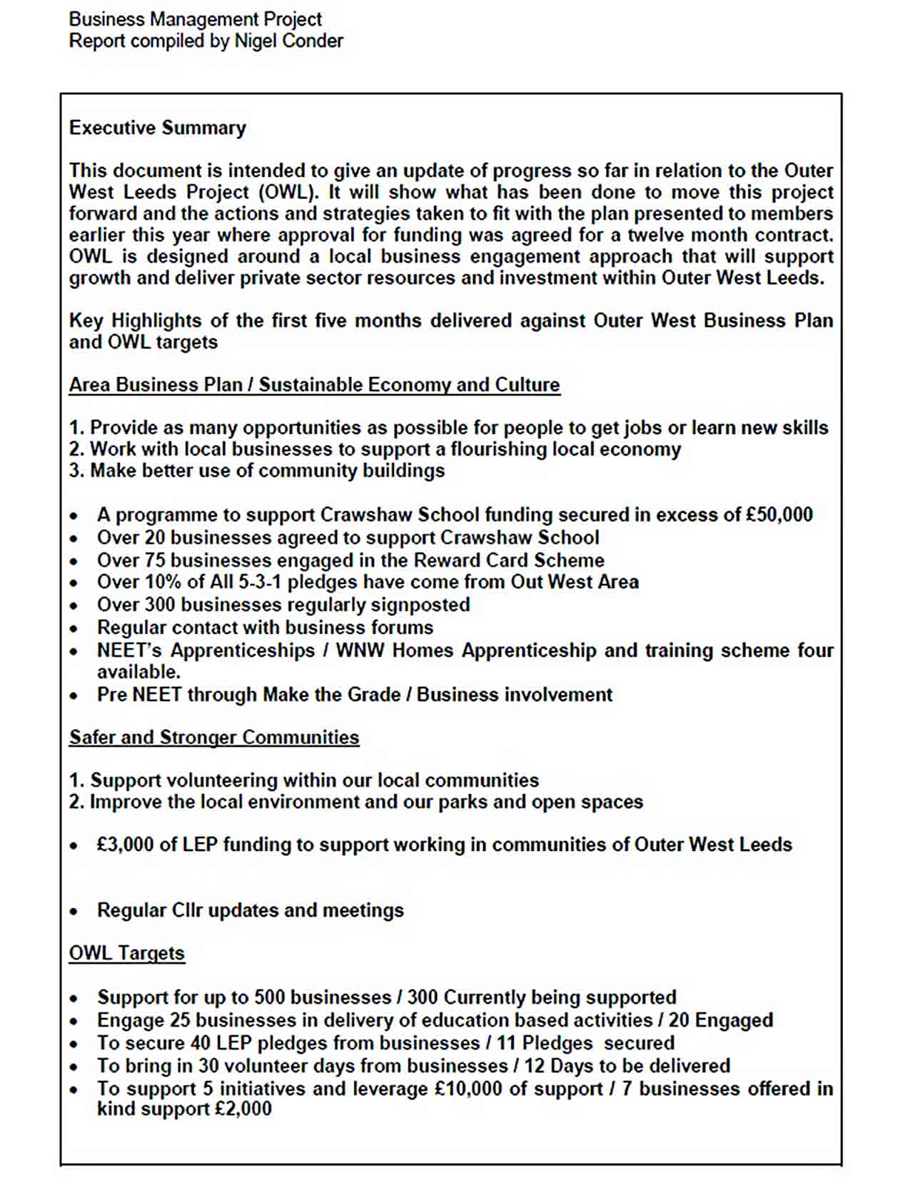 Templates Business Management Project Report