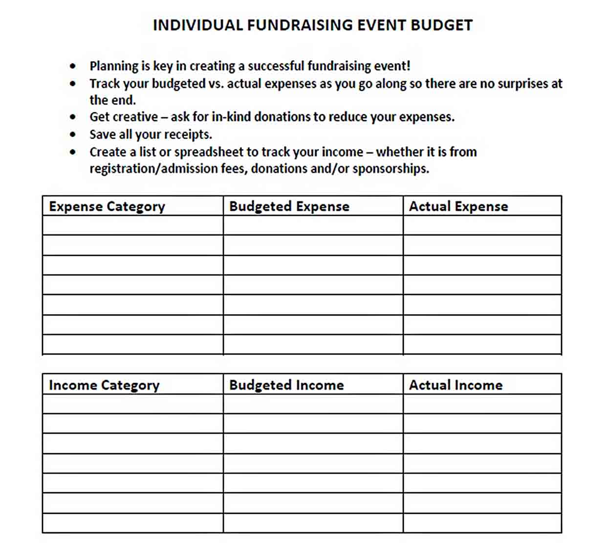 Fundraising Event Budget Template sample