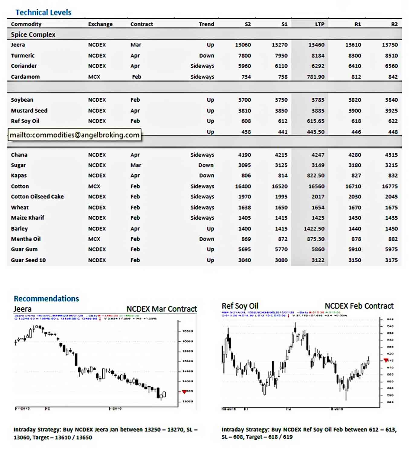 Templates Angel Commodity Technical Report