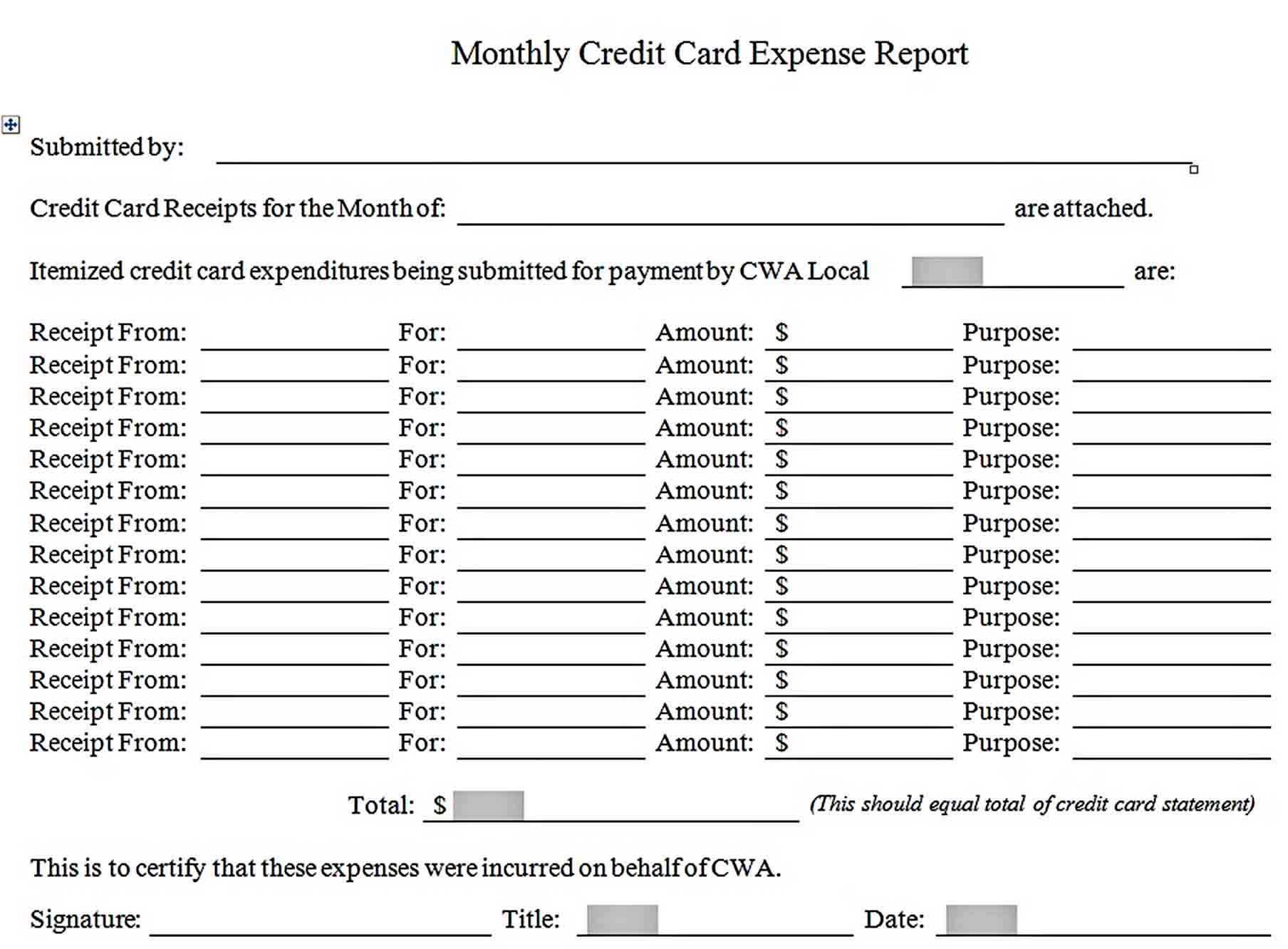 Templates Credit Card Expense Report