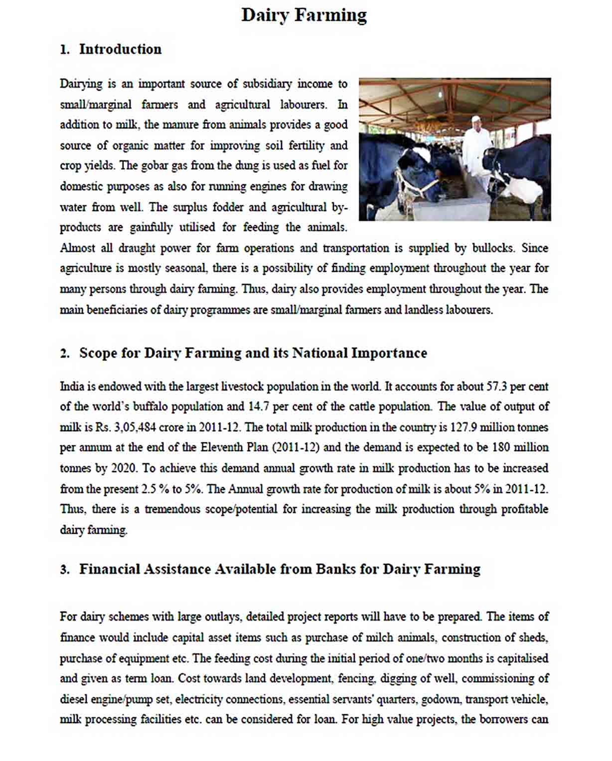 Templates Dairy Farming Project Report