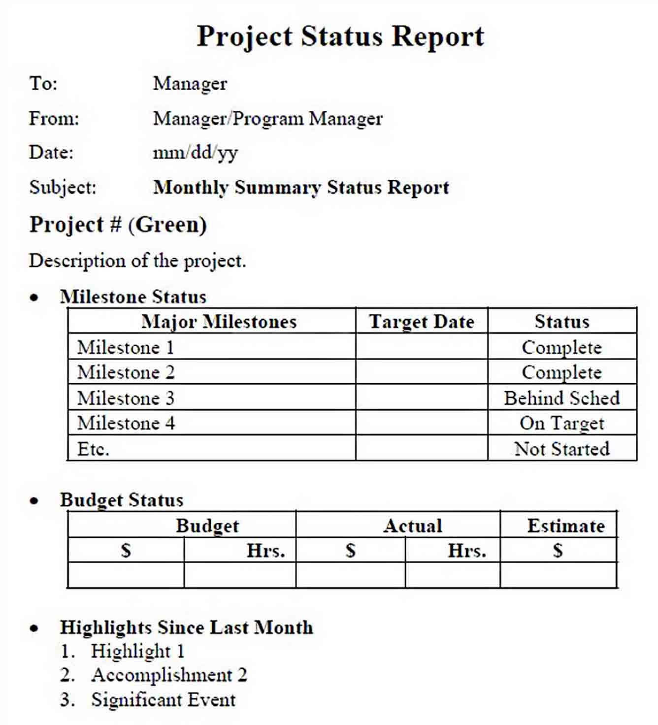 Templates Multiple Project Status Report Example