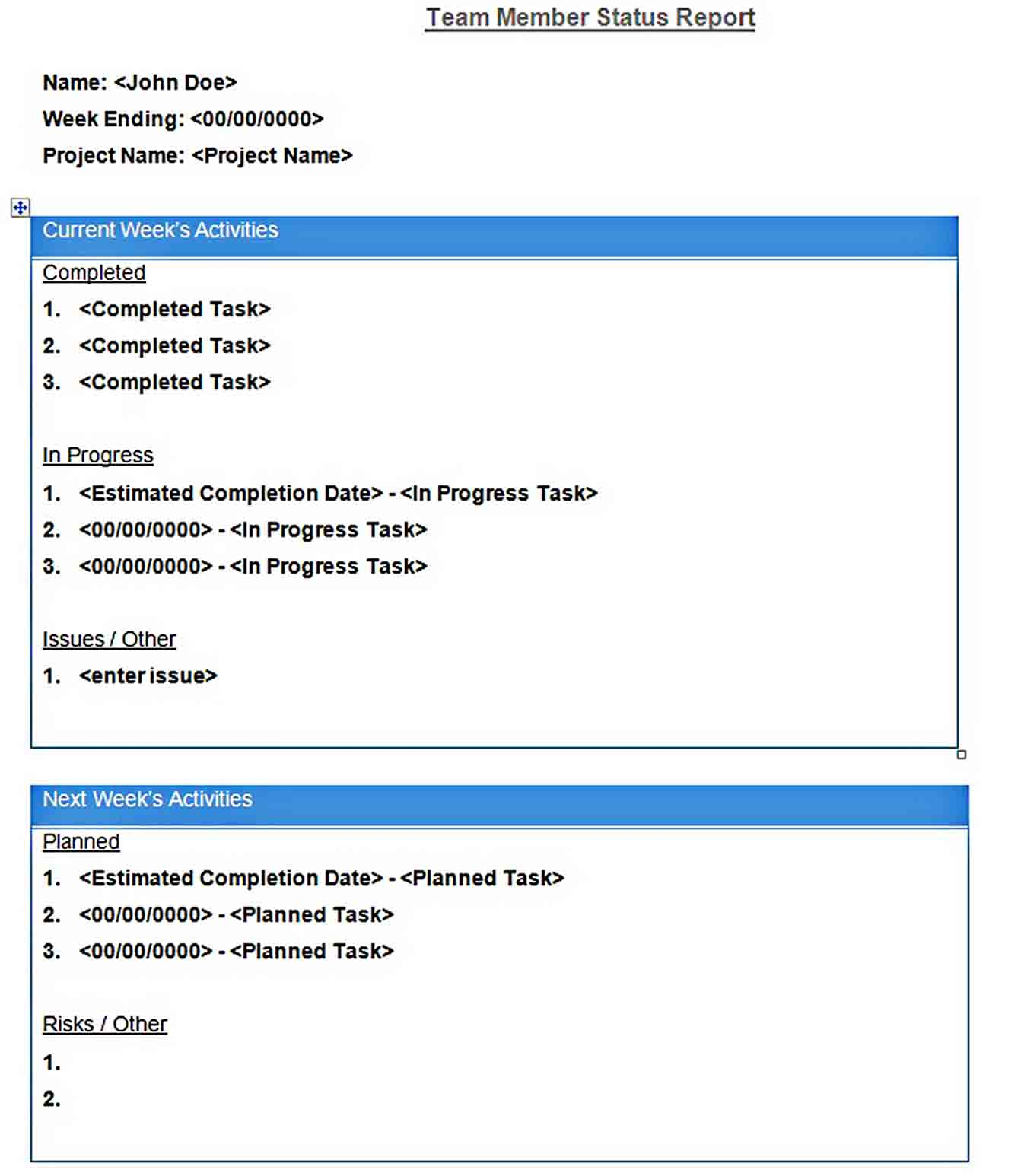 Templates daily report word